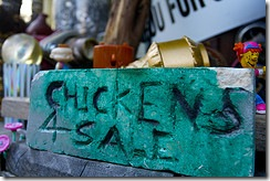 chickens-for-sale